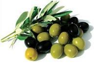Buy Seeds of olives