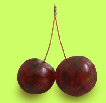 Buy Cherries