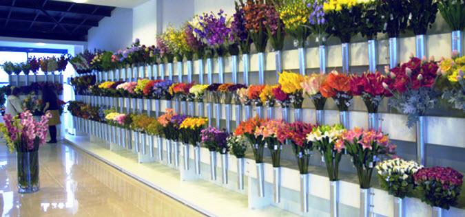 Yapay çiçek in türkiye