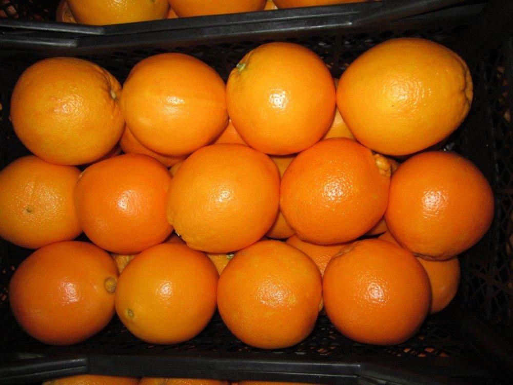 Satın al Oranges
