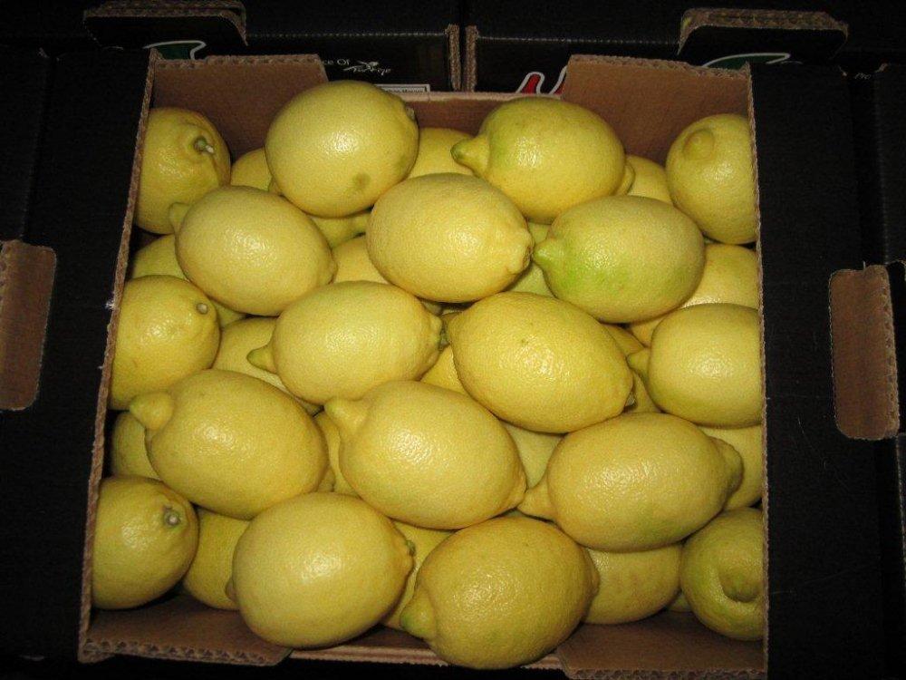 Satın al Lemon