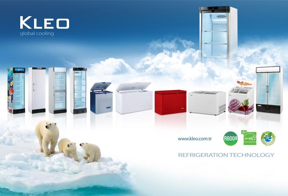 Satın al Counter Top Cooler, Bottle Cooler, Chest Freezer, Frozen Food & Ice-Cream Conservator & Minibar