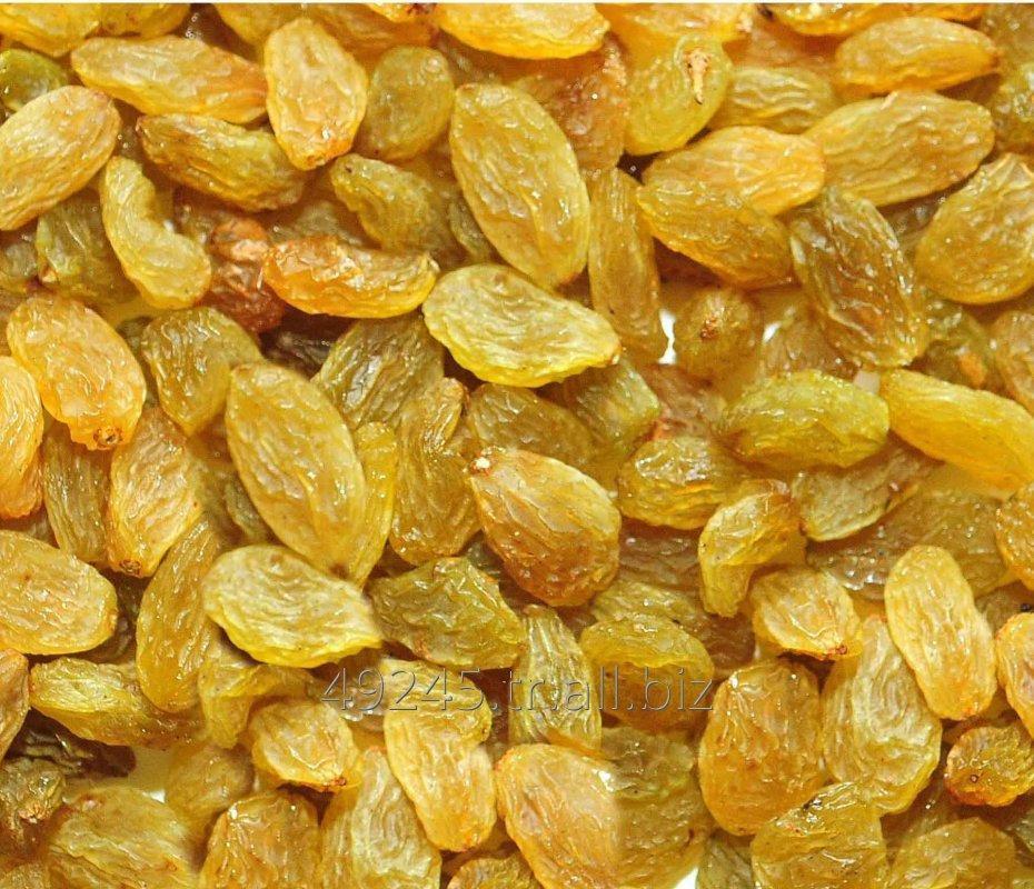 Satın al Golden Raisins