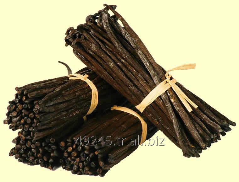 Satın al Pure Black Vanilla Beans (Premium Gourmet Grade A)