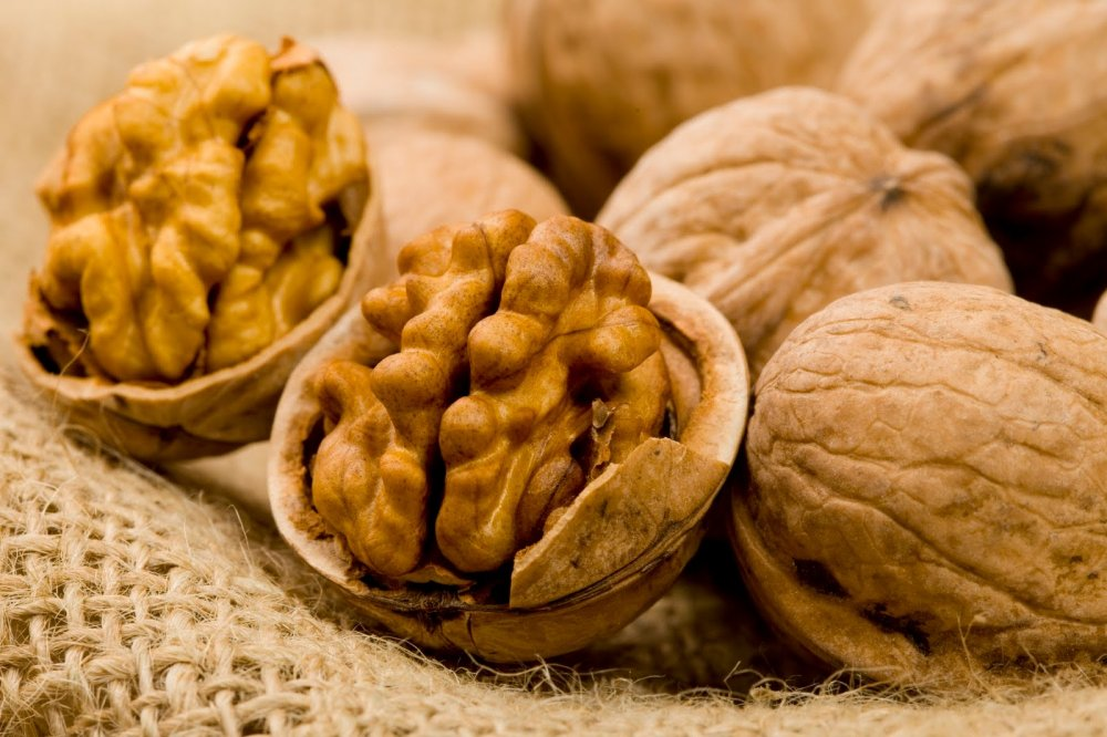 Satın al Shelled and unshelled Walnuts