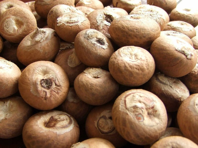 Satın al Quality Whole and split betel nuts