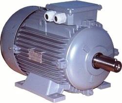 Satın al Gamak elektrik motoru