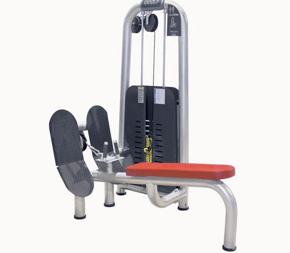Fitness egzersiz aletleri