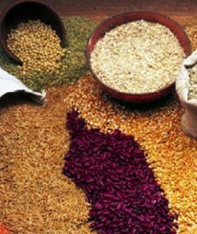Satın al Ürünleriniz Kuru Gıdalarınız İstedğiniz Şekilde Ulaşsın...