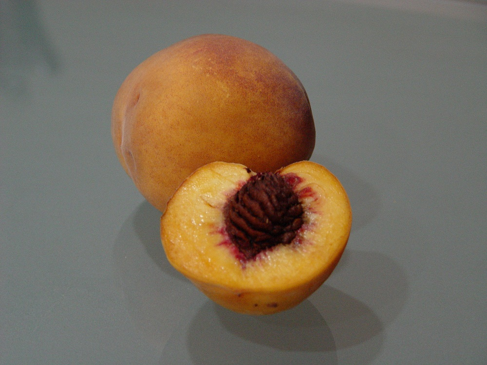 Şeftali Fidanı Flemania
