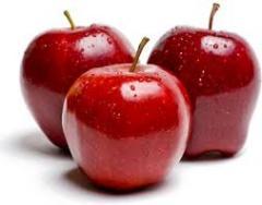 Elma fidanlari