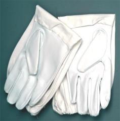 Arıcı eldiveni