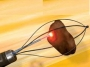 Uroloji cerrahisi aletleri