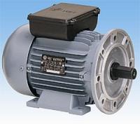 Bir fazlı indüksiyon motorları