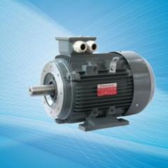 Yüksek verimli alüminyum gövde elektrik motorlar