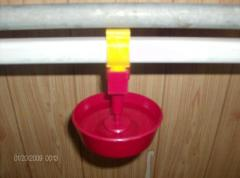 Drinking bowls for integrated poultry farms
