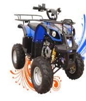 Apachi ATV 110 Offroad