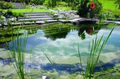 Biyolojik göletler