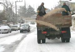 Salt for roads strewing