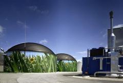 Biogas power plants