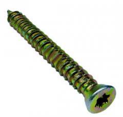 Buldex screw