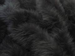 Squirrel fur