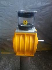 Air lock 300