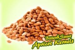 Organic Apricot Kernel