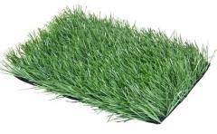 Artificial Grass / Artificial Turf/ Suni çim / Искусственная трава