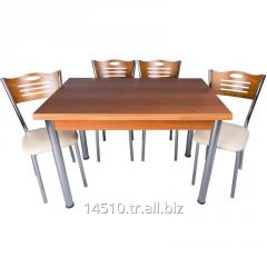 Artemis Ceviz Masa ve İnci Sandalye Takımı