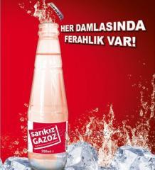 Fruit Flavored Mineral Carbonated Soft Drink