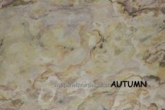 2mm Doğal Taş Duvar Paneli - 2V Stone