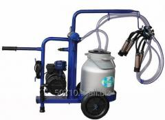 Milking machines for goats and sheep