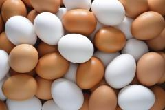 Farm Fresh Chicken Table Eggs Brown and White Shell Chicken Eggs