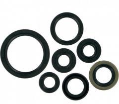 Oil Filter Seal