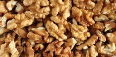 Dried Walnuts in shell/walnuts kernels