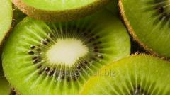 Fresh Red Kiwi Fruit,Green Kiwi Fruit