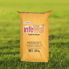 INTE WALL