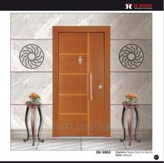 Daire çelik kapısı