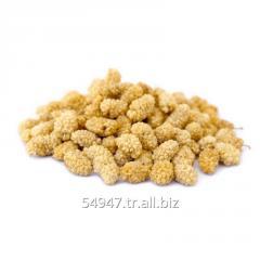 Dried Ayaş White Mulberry