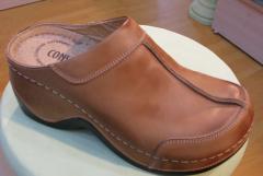 Bayan Ayakkabı & Terlik Modeli 003