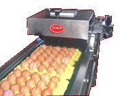 Yumurta Kodlama Makinesi
