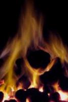 Atakaş İthal Kömür 02