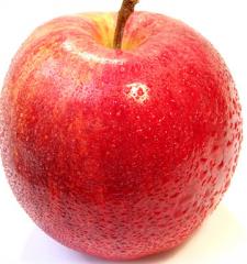 Tadıyla ve Lezzetiyle Elma Çeşitleri Üretimi ve