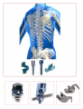 Spinal implantları
