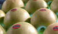 Elma Çeşitleri ve Üretimi Uygulamaları
