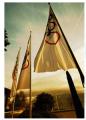 Флагове корпоративни
