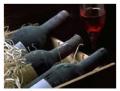 Şarap Öküzgözü