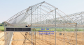 Greenhouses from polycarbonate
