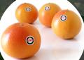 Greyfrut